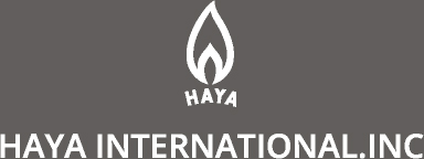 HAYA INTERNATIONAL.INC